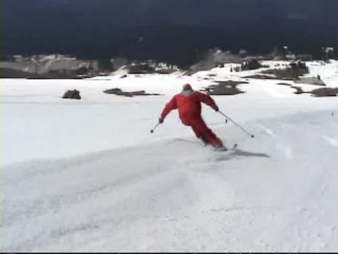 Skiing the Brushies